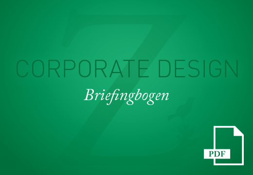 Teaser Corporate Design Briefingbogen